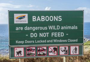 _MAY1733 Do Not Feed the Baboons.jpg